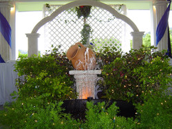 Fountain with Plants