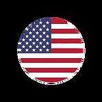 american flag circ.png