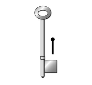 Universal TS021/5 Rim Key Blank (5.0 Gauge)