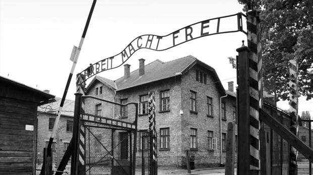Holocaust Education Video