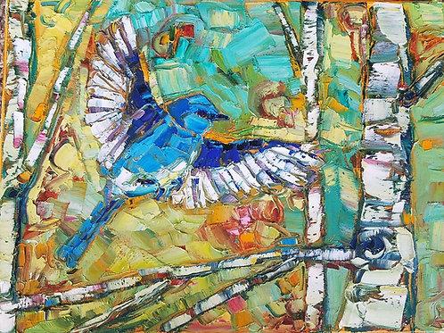 Bluebird in Aspens
