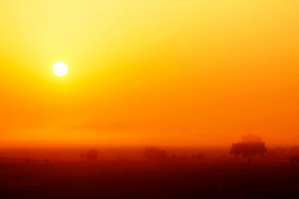 L'Alba e la Nebbia