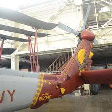 Sea Hawk Tail