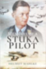 PandS_StukaPilot.JPG