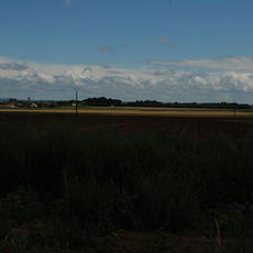 View from the site