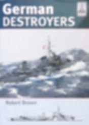 ShipCraft_GermanDestroyers.JPG