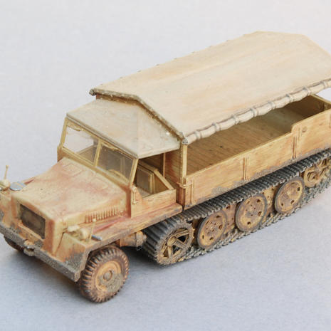 Revell 1/72 SwS Cargo