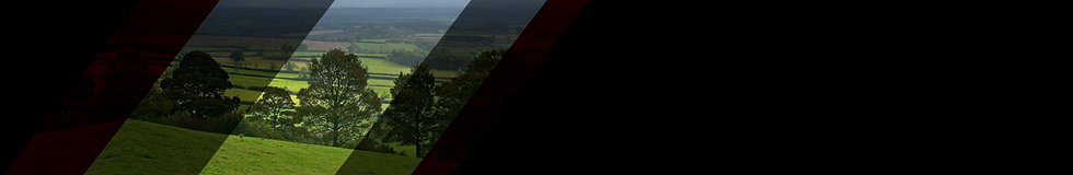 Banner for Selection Field.png