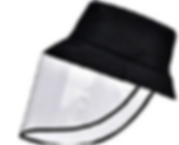 hat face shield.PNG