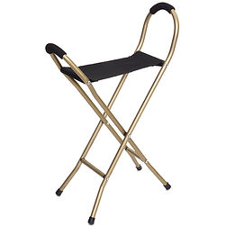 4 leg seat cane.jpg