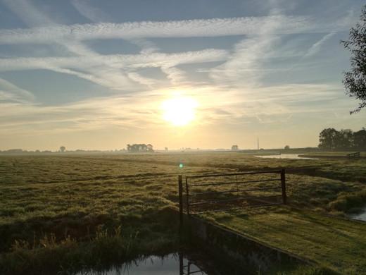 ochtend buiten boerderij