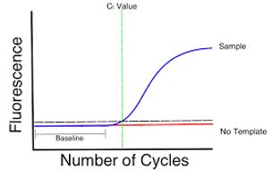 rtpcr graph.png