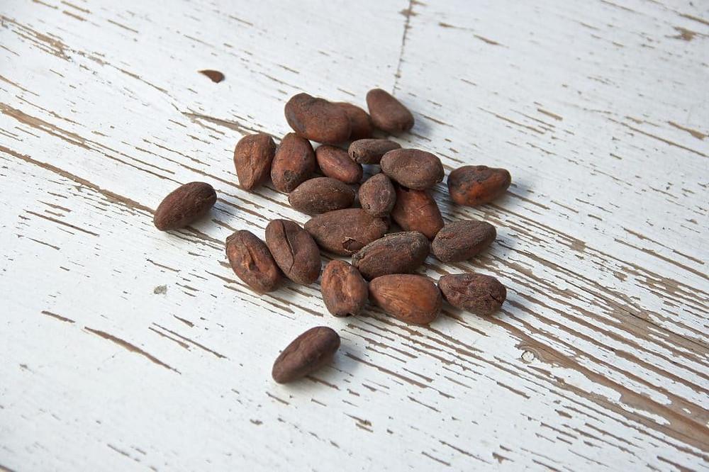cocoa-bean-1282889_1920
