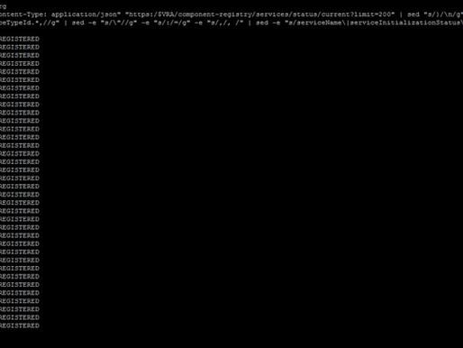 Check vRA Services status via API