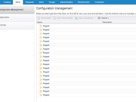 Removing stale Puppet entries from Configuration Items
