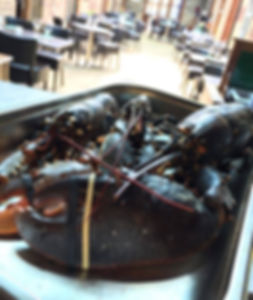 Lobster Resterant Bar Deal Fresh