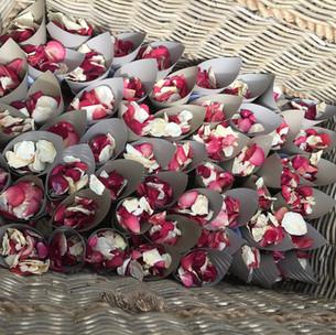 Rose Petal Confetti Cones