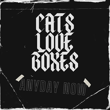 CATS LOVE BOXES_ ANY DAY NOW_COVER LARGE