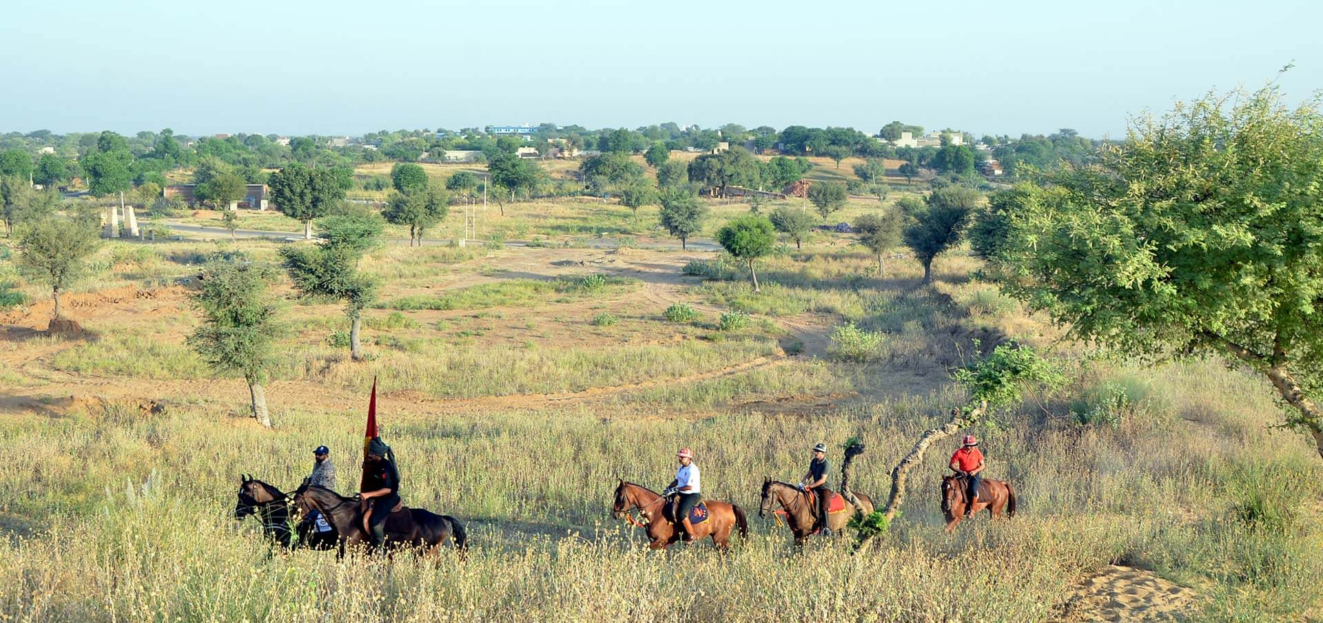 Riding Safari