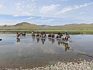 Riding Holiday Mongolia