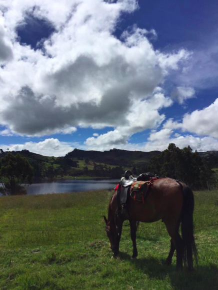 Colombia Riding Adventure Holiday