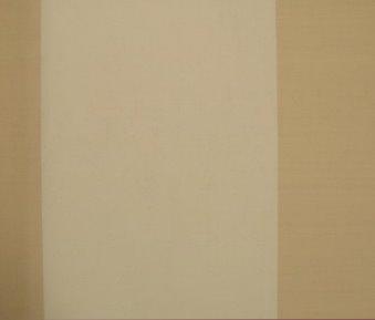 carta da parati, khaki, riga