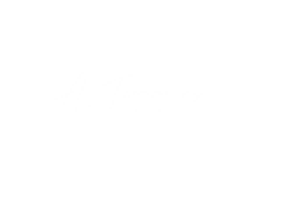 A. Timmins Photography.white.png