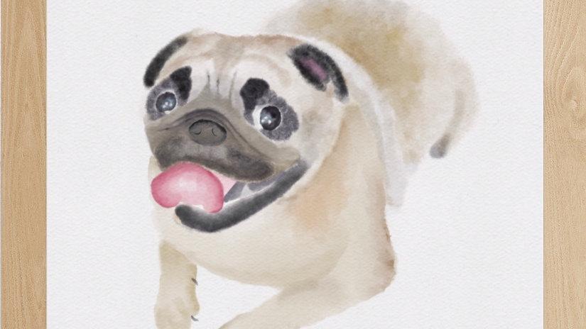 Pug (AD184)