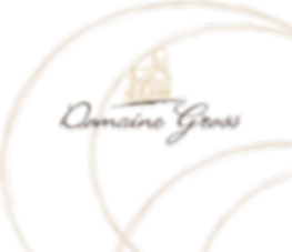 logo + lune.png
