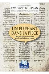 un-éléphant-dans-la-pièce.jpg