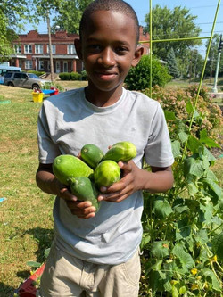 Student grows Vegetables
