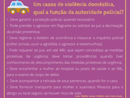 A Função da Polícia em Casos de Violência Doméstica