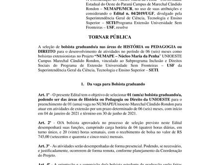Processo Seletivo para Bolsista graduando(a) em História ou Pedagogia ou Direito - Edital nº 16/2020