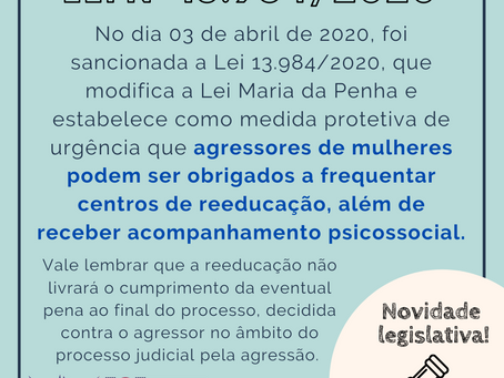 NOVIDADE LEGISLATIVA - Lei Nº 13.984/2020
