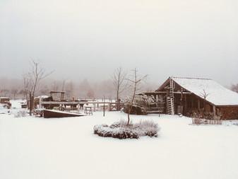 Winter am Herzberg