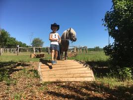 Cowboy & Trüffel