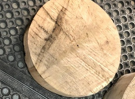 Rough turning my first wet wood blank