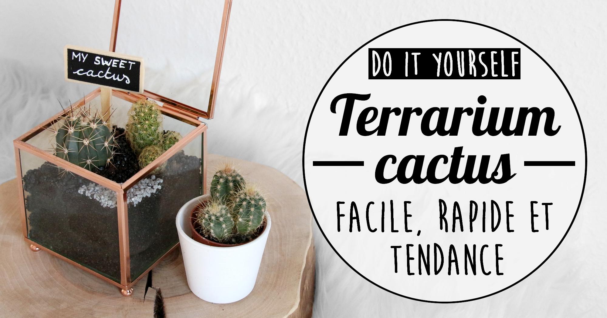 Do It Yourself Fabriquer Un Terrarium Cactus My Sweet Cactus