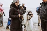 SPO-Nordseepferde_2021-08-14 (1064)fb.jpg
