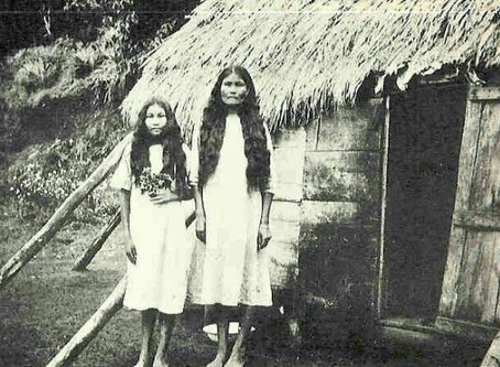 Are The Arawak Taino Indians Extinct?