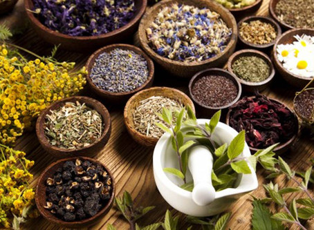 To Herb or Not to Herb? That is the Question
