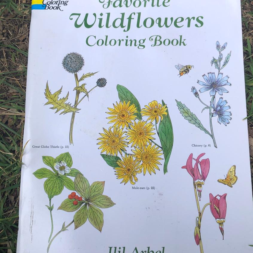 Favorite Wild Flowers Coloring