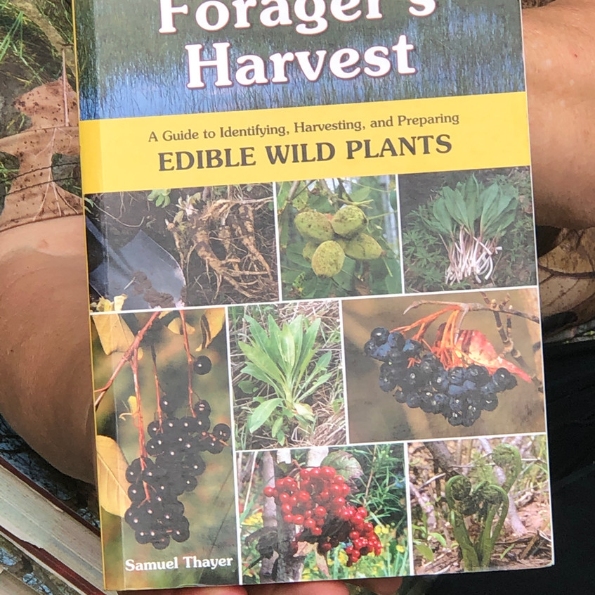 The Forager's Harvest: A Guide