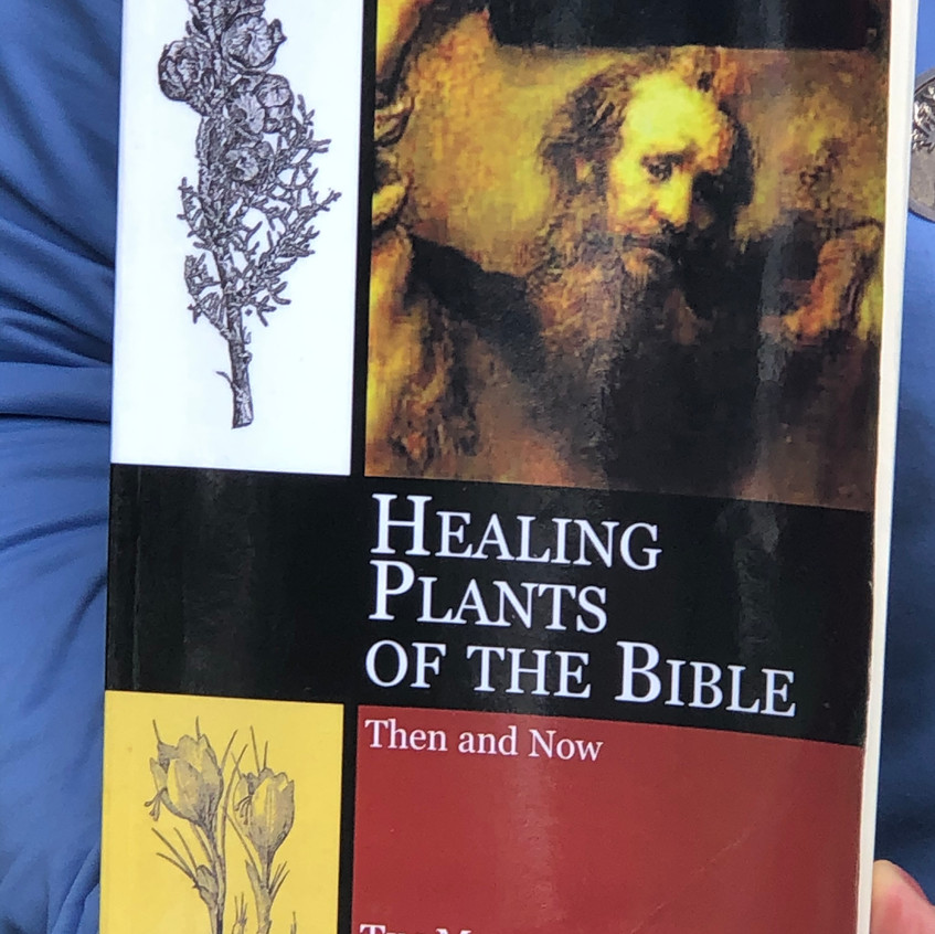 Healing Plants of The Bible