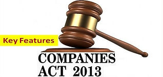 features_companies-act-2013%202_edited.j