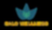 Salo Wellness logo