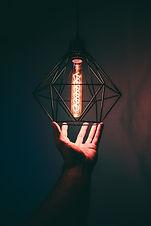 adult-bulb-close-up-973506.jpg