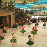 Tokyo Hula Spa Resort Hawaiians.jpg