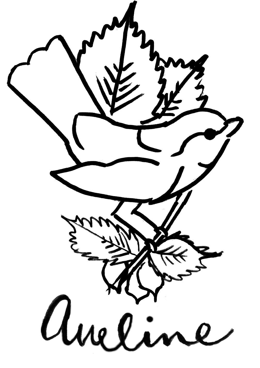 aveline logo updated