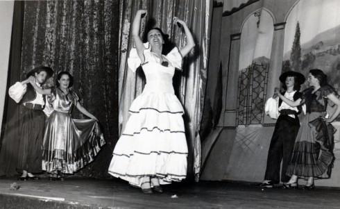 Hermine flamenco